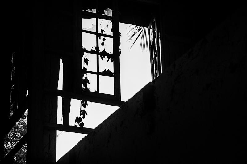 Abandoned houses dawei-5