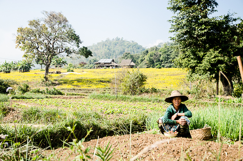 Hsipaw-5