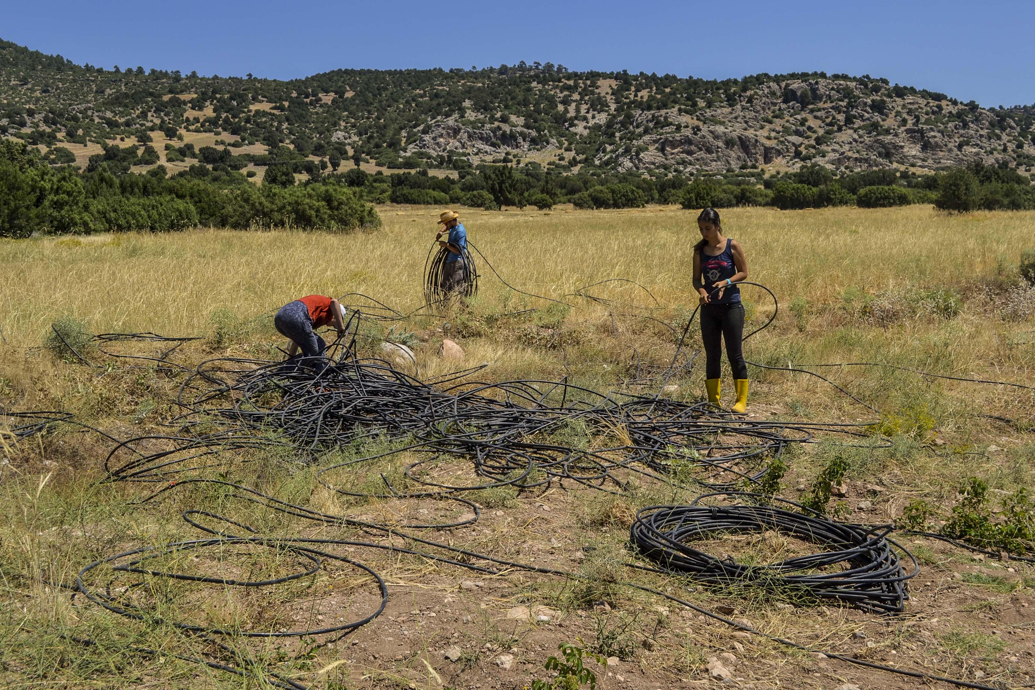 Setting up irrigation system