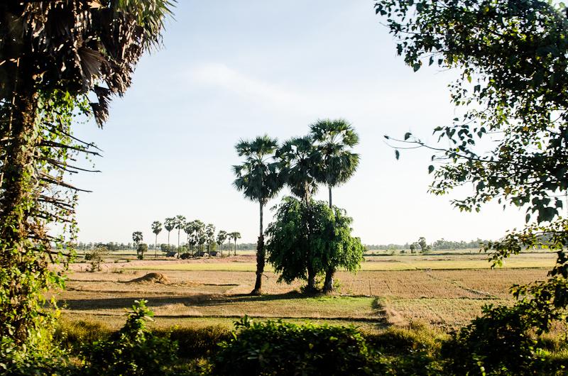 Myawaddi to Yangon-19